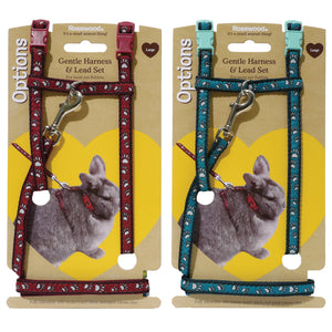 Paw Print Harness & Lead Large