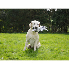 Load image into Gallery viewer, Jolly Doggy Tough Safari Zebra