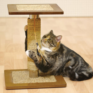 Oregano Cat Scratcher