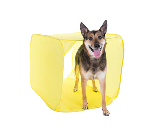 Outward Hound Zip & Zoom Indoor Agility Kit