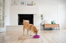 Load image into Gallery viewer, Outward Hound Fun Feeder Purple