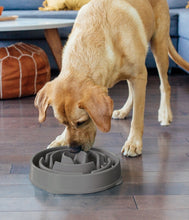 Load image into Gallery viewer, Outward Hound Fun Feeder Grey LG