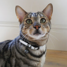 Load image into Gallery viewer, Cat Collar Silver