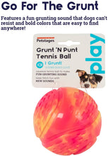 Load image into Gallery viewer, Grunt 'n Punt Tennis Ball Pnk