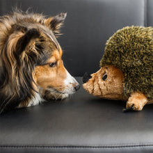 Load image into Gallery viewer, Outward Hound HedgeHogz