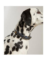 Load image into Gallery viewer, Rosewood Joules Navy Leather Dog Collars
