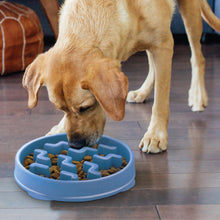 Load image into Gallery viewer, Outward Hound Fun Feeder Notch Blue