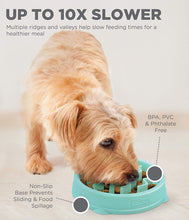 Load image into Gallery viewer, Outward Hound Fun Feeder Tiny