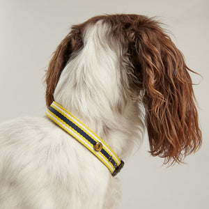 Rosewood & Joules Navy Coastal Dog Collars