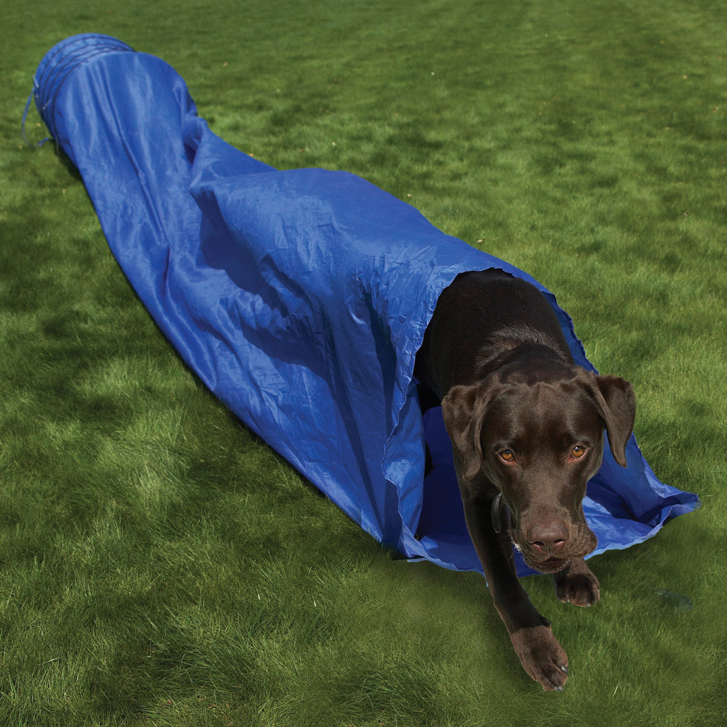 The Rosewood Dog Agility Tunnel