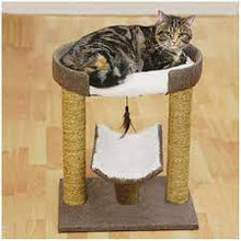 Load image into Gallery viewer, Rosewood Catwalk Collection Saffron Cat Scratcher