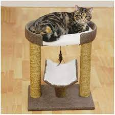 Rosewood Catwalk Collection Saffron Cat Scratcher