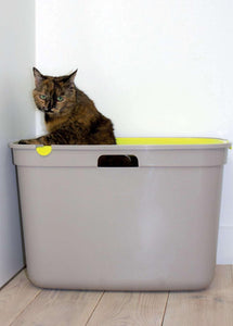Top Cat Toilet