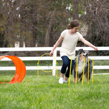 Load image into Gallery viewer, Zip & Zoom Outdoor Dog Agility Kit