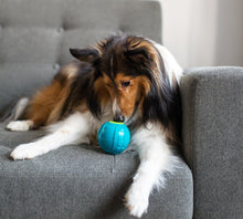 Load image into Gallery viewer, Petstages® Sneaky Squeaky Ball