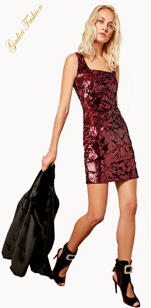Sequined Embroidered Dress