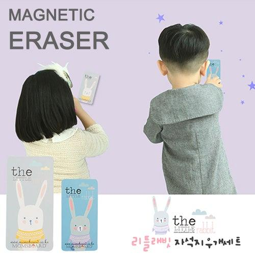 Magnetic Duster