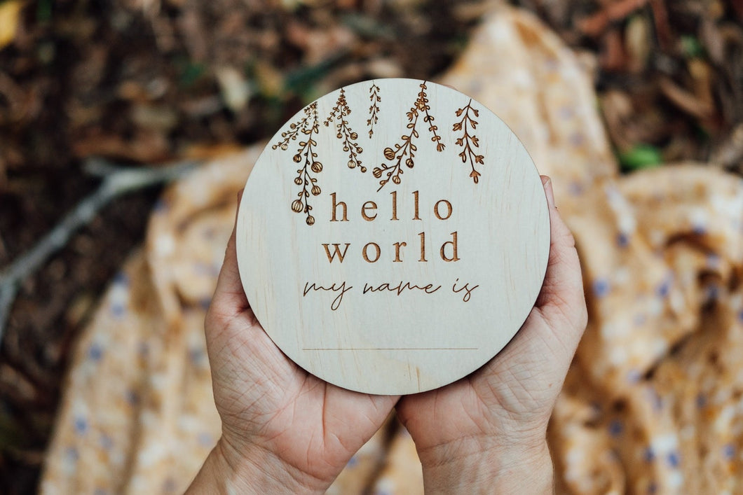 Etched 'Hello world my name is' announcement plaque
