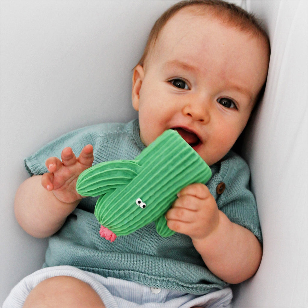 Lanco Pink Cactus Teether