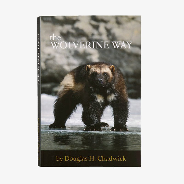 The Wolverine Way (Douglas Chadwick)