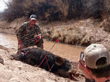 $100 Deposit - Blue Rooster Wild Pig Hunt - Arizona Hunting Club