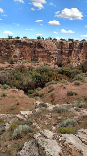 Diablo Canyon Excursion (Az Hog Goldmine) $50 - Arizona Hunting Club