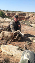 Arizona Wild Pig Hunt $250 Deposit - Arizona Hunting Club
