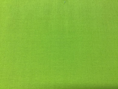 Painter's Palette Solid Apple Green