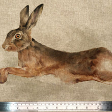 Load image into Gallery viewer, Leaping Hare Panel