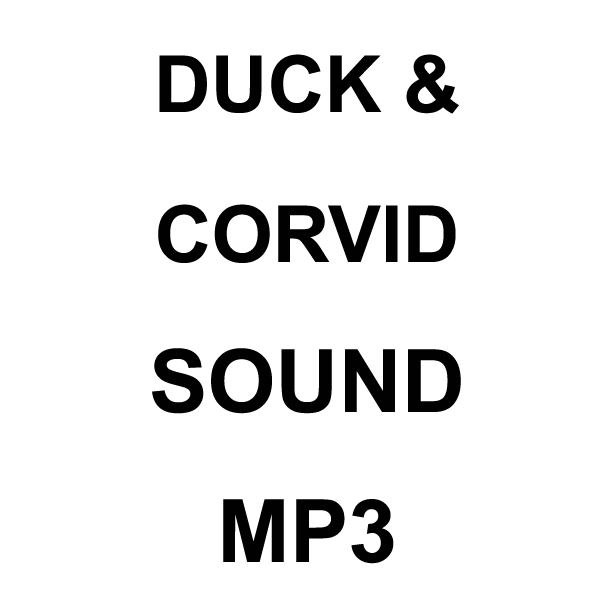Wildhunter.ie - Duck & Corvid MP3 Sound Download -  Callers