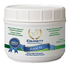 Load image into Gallery viewer, Equinety Horse XL - 100% Pure Amino Acids