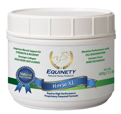 Equinety Horse XL - 100% Pure Amino Acids