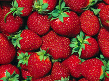Load image into Gallery viewer, Strawberry Powder