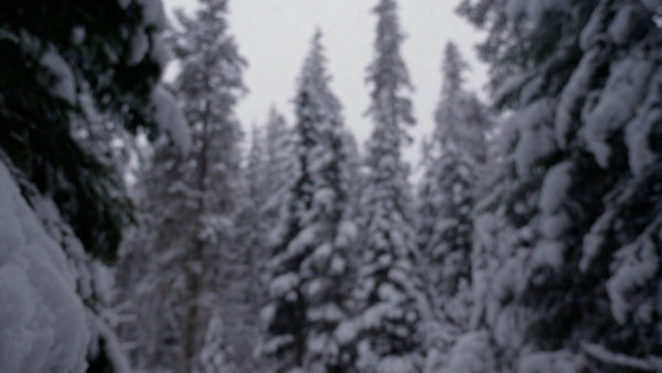 winter-snow-03-pv-wm.mp4