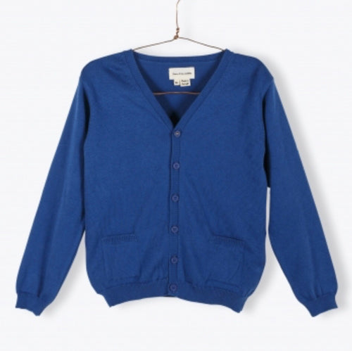 Vneck Cardigan - Blue