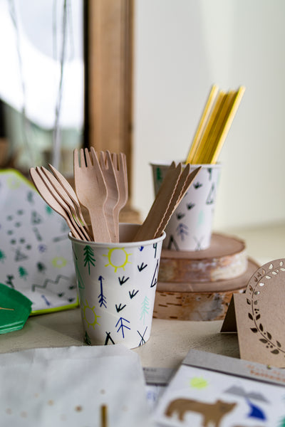 Wooden Party Compostable Utensils