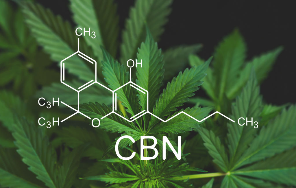 CBN vs CBD: What's the Difference?
