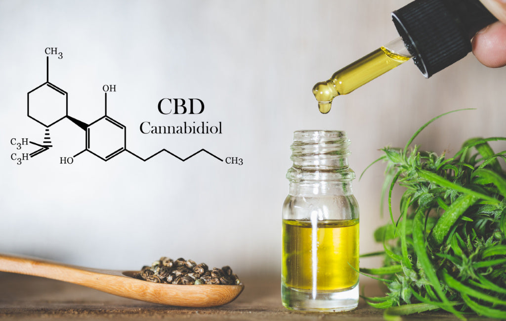 CBD oil bottle and molecule, hemp seeds, cannabis plant