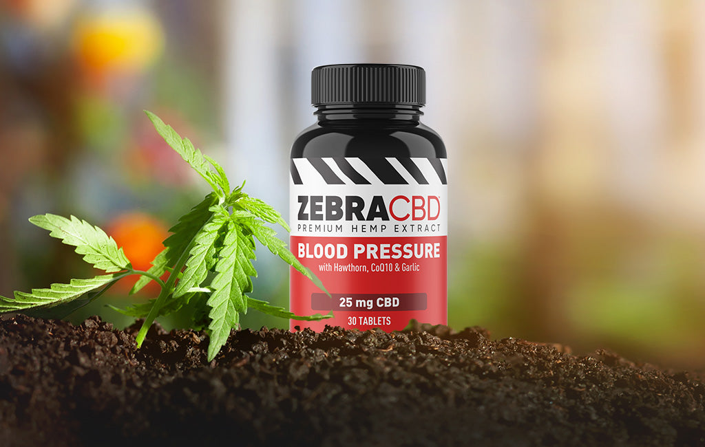Zebra CBD Blood Pressure support tablets in hemp garden