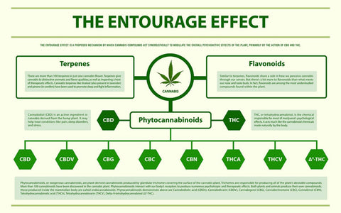 entourage effect chart