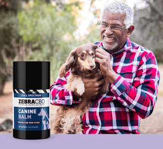 Zebra CBD canine balm and man with dog