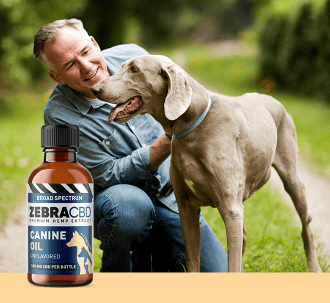 Zebra CBD canine oil and man with dog and