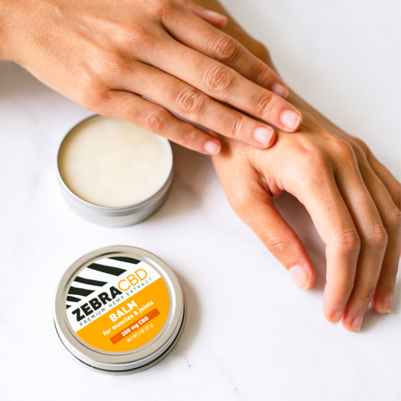 Zebra CBD Balm application 4-pack