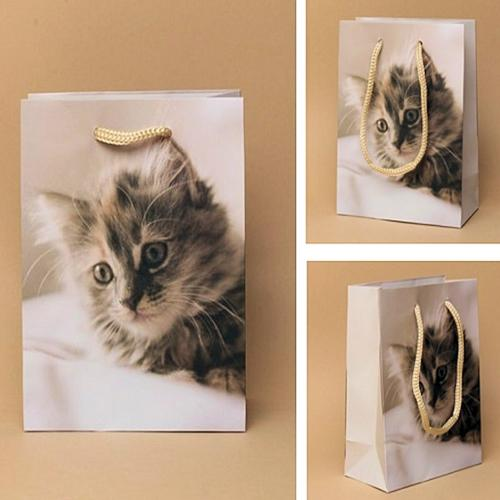 Cat Print Gift Bag [Medium]