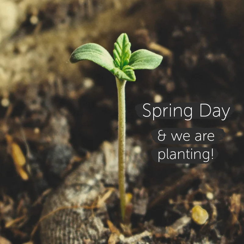 Spring Day - let us plant