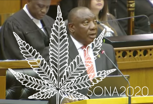 Cannabis in South Africa THIS YEAR! #SONA2020