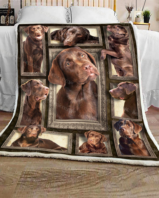 Blanket - Dog - Chocolate Labrador Brown ver 2 3D - Benicee