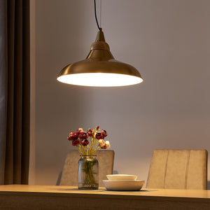 Beldon Metal and Wood Pendant Light