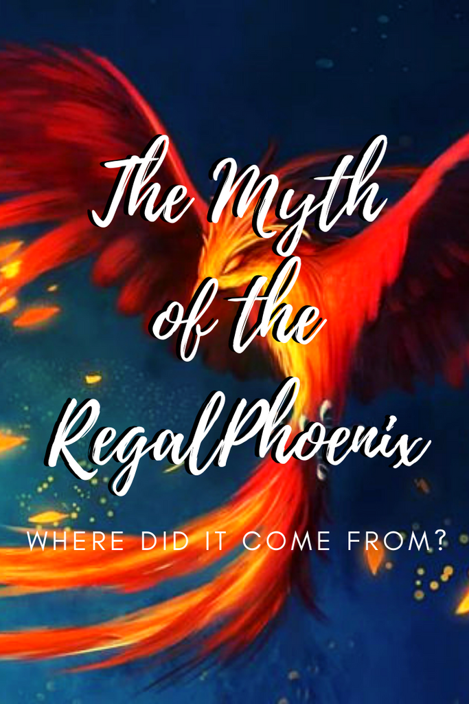 The Myth of the Regal Phoenix! (How we got our name!)