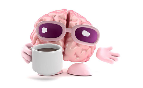 Brain Drinking Coffee